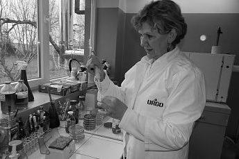 Prof. Danuta Czernomysy-Furowicz - badania mikrobiologiczne.